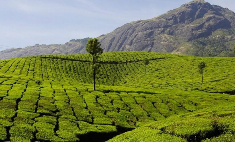 India-825x510